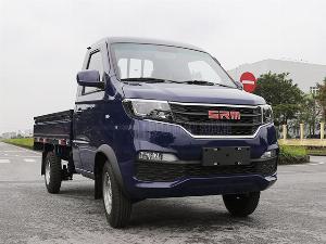 sản xuất năm 2020 Số tay (số sàn) Xe tải động cơ Xăng