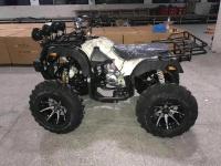 Xe máy 4 bánh địa hình