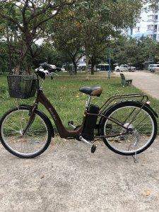 xe đạp điện trợ lực tay ga hàng Nhật bãi cũ giá rẻ Tp HCM – Mã: X28